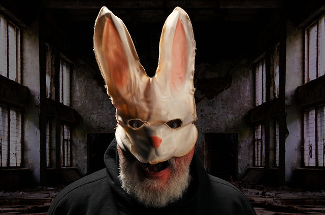 The Tommy Bunny Seals Easter