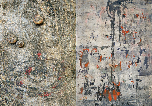 Abstract of grey tree bark and grey wall, both with splotches of orange paint
