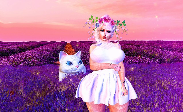 Perfume of lavender