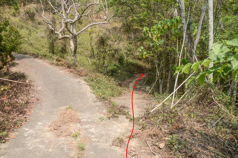 尖山坑山登山路徑