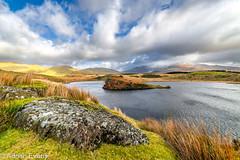 Llyn y Dywarchen Snowdonia Wales