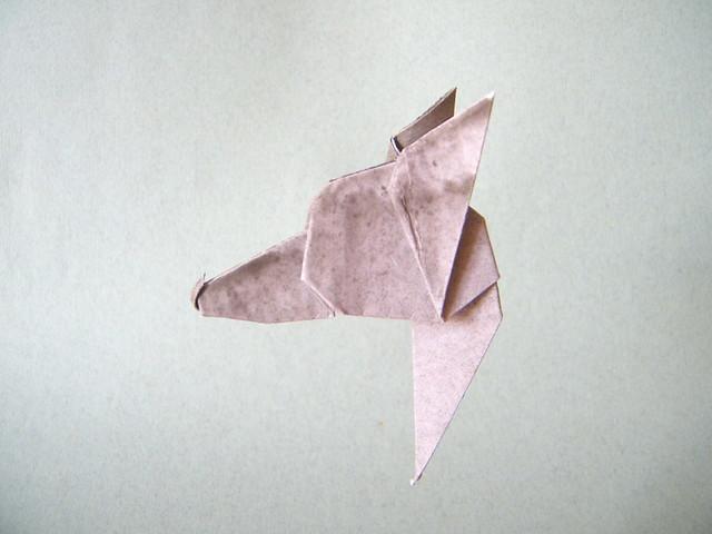 Cabeza de Galgo Ibicenco (Ibizan hound head) - Félix Gimeno