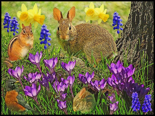 Let's Find Spring's Newest Arrival...