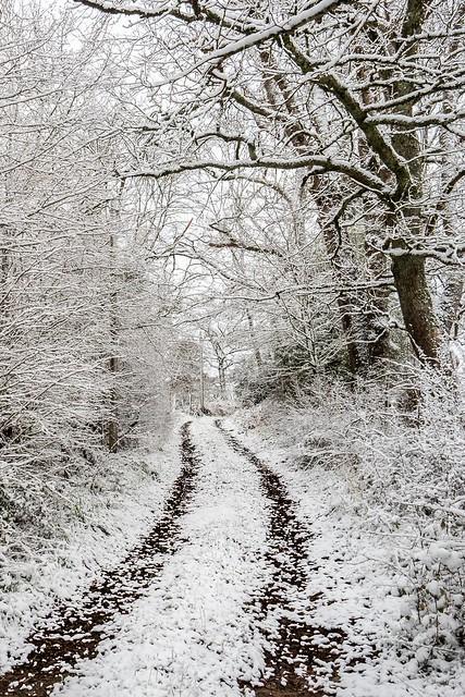 Néoux 1ère neige II