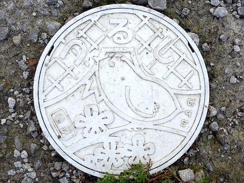 Tsuru Yamanashi, manhole cover  3 (山梨県都留市のマンホール3)
