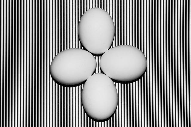 Eier auf  schwarz - weiß