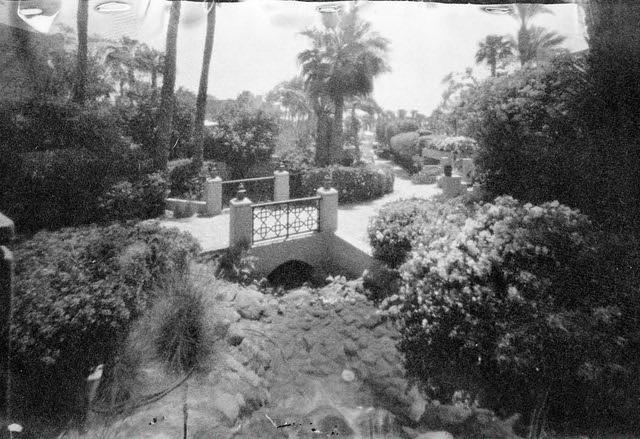 Washi Garden (Ondu 6x9 Rise / MF Washi V)