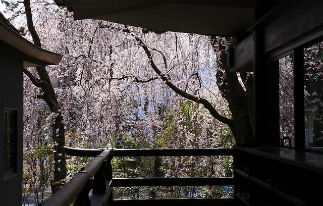 Kuonji Temple : Minobusan, Yamanashi, Japan