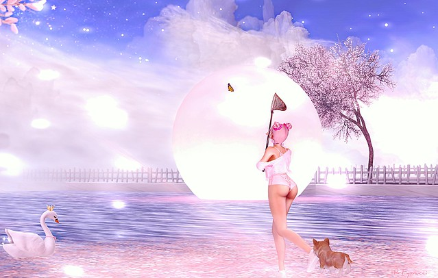 ► ﹌Spring Fever...◄﹌