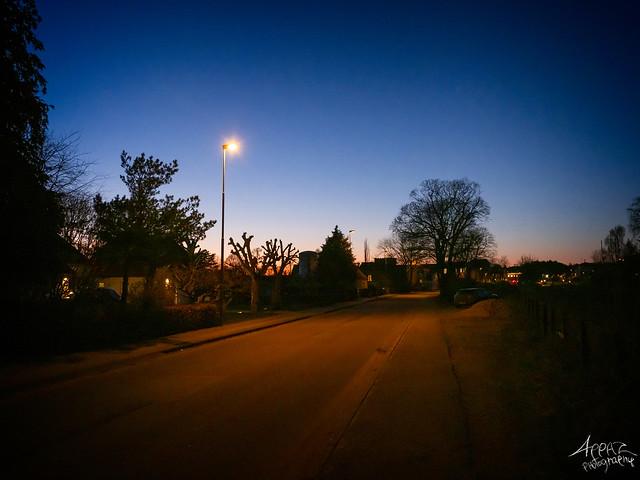 Night, Ry 2021
