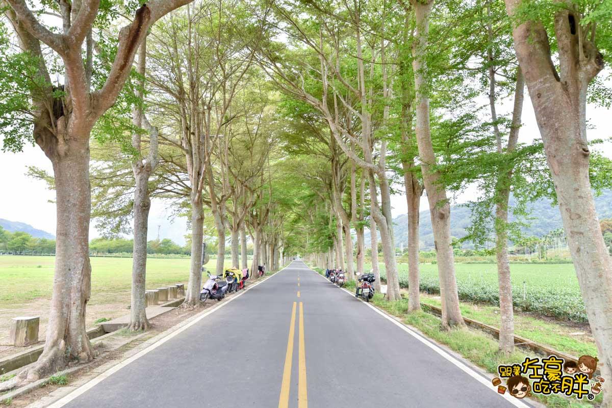 台東鹿野神社 鹿野景點 -40