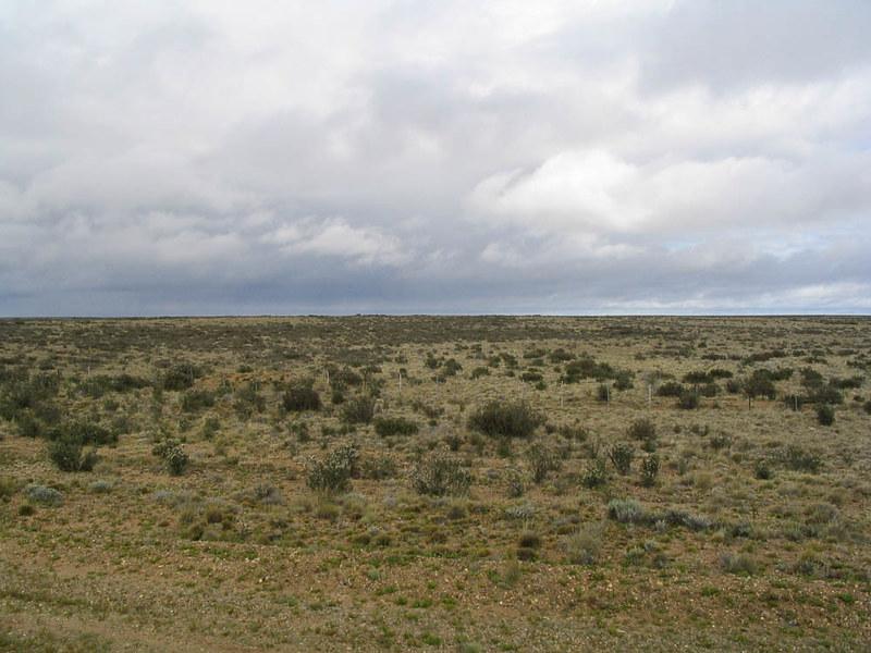 Patagonian_plains_argentina.jpg