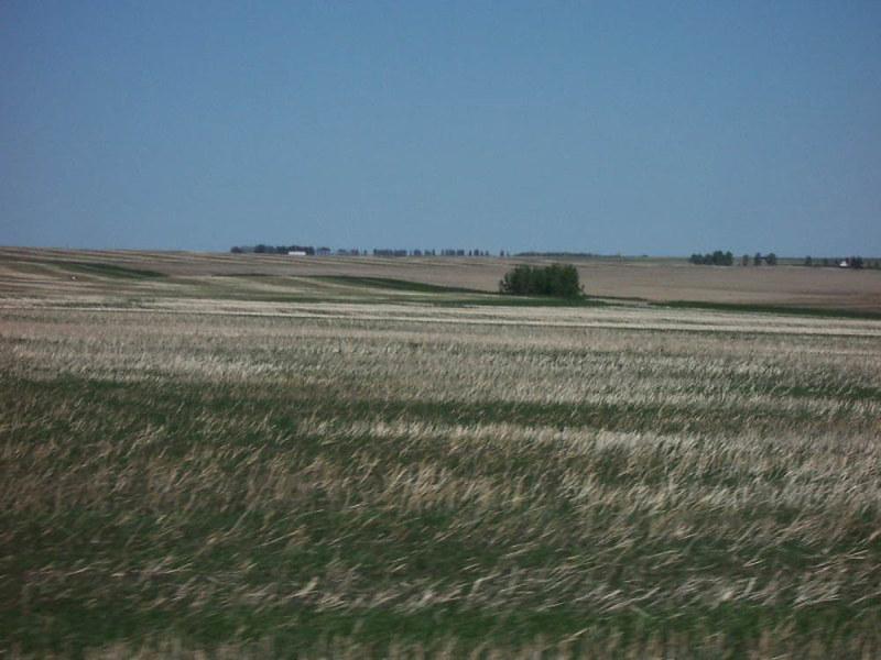 Prairie_Alberta.jpg