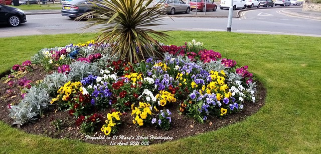 Flowerbed in St Mary's Street Huntingdon 1st April 2021 002