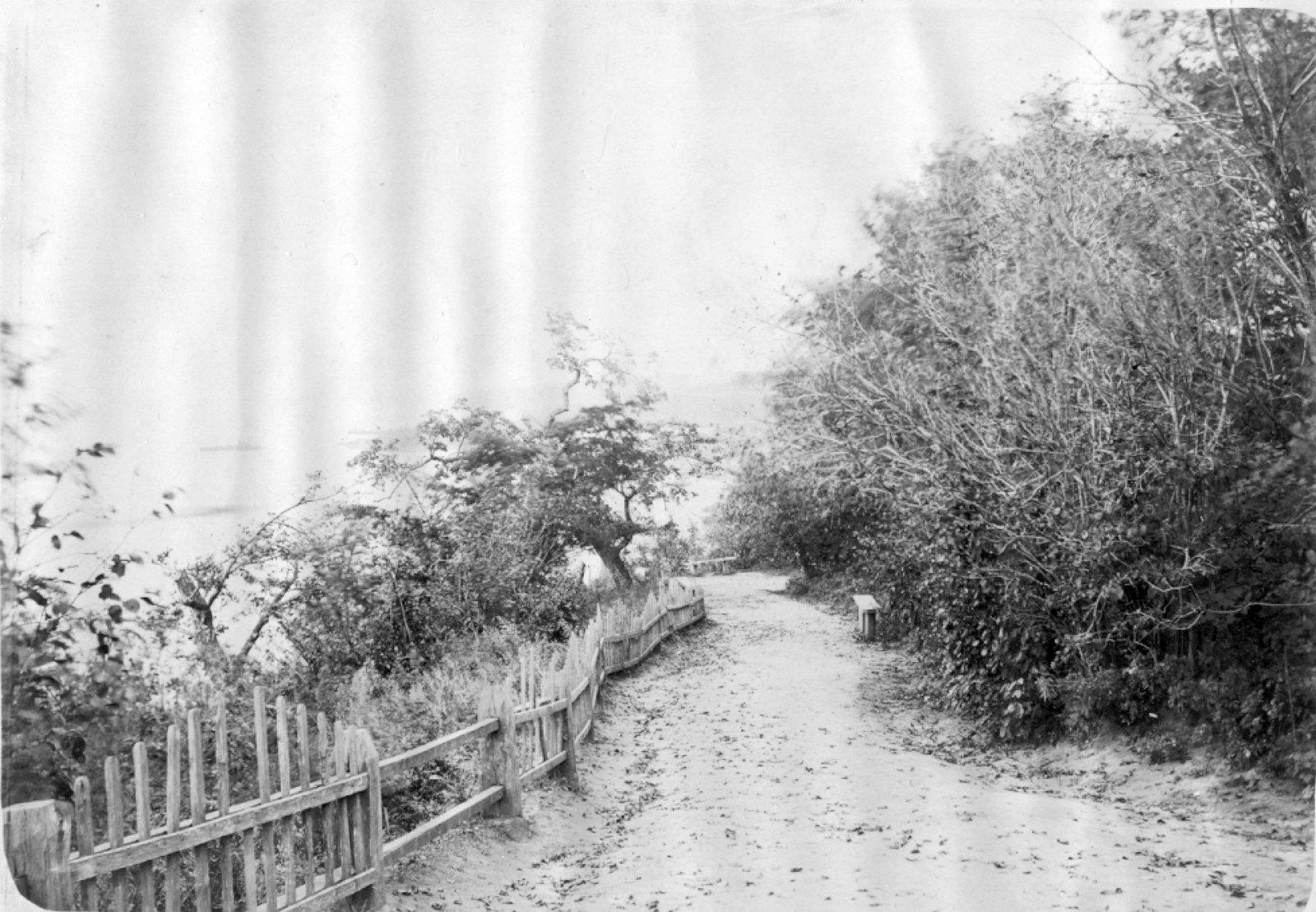 14. Аллея городского парка, ведущая к городским купальням. Осень 1904