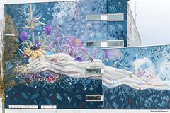 Dream Grafitti