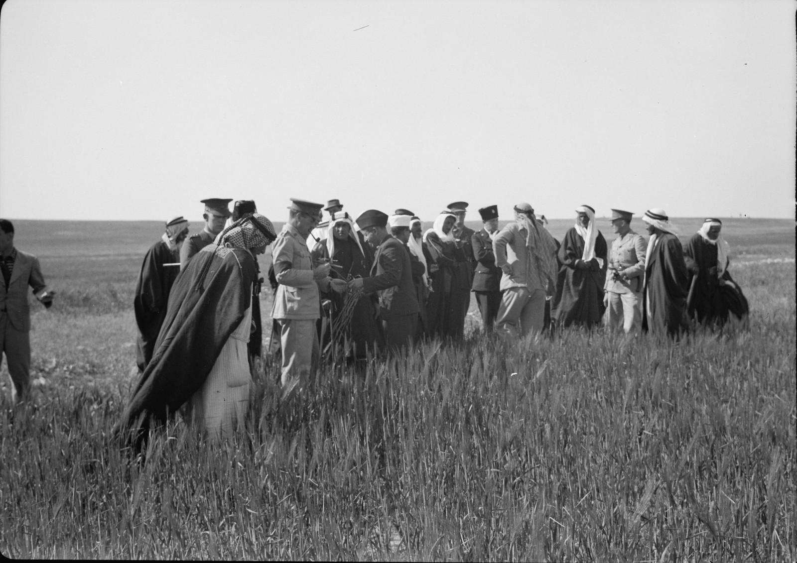 09. Группа гостей в поле слушает лекцию
