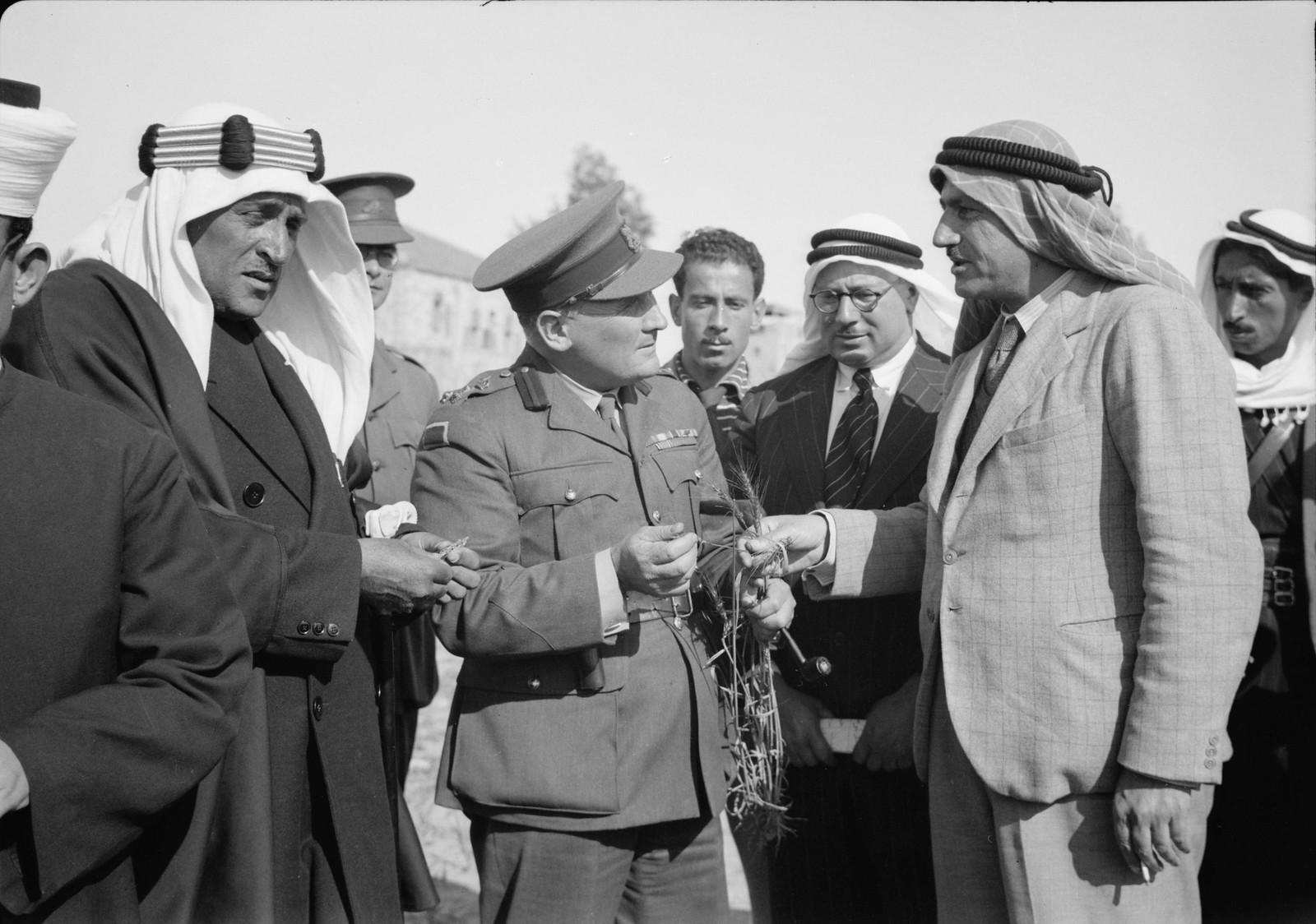 06. Генерал Аллан задает вопросы об австралийской пшенице