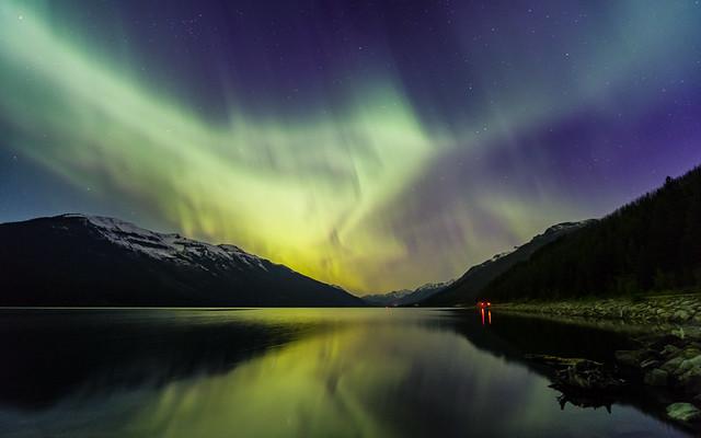 Nature's Fireworks (Explored 4-4-2021 9k Views)