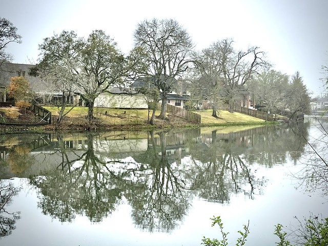 Grey Bayou