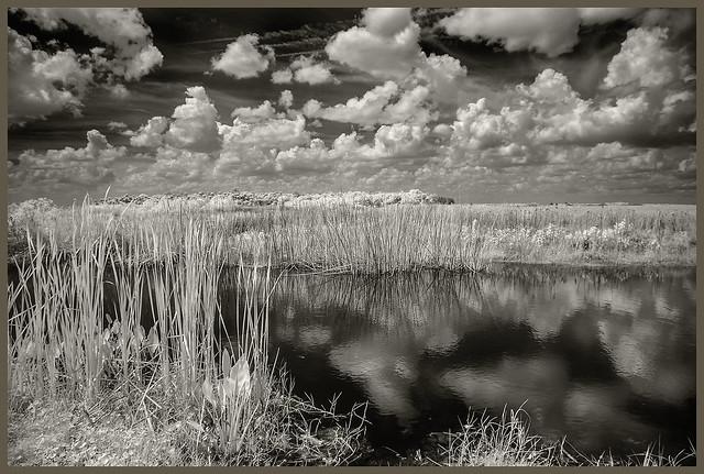 Lake Woodruff IR #23 2021; Clouds Above and Below