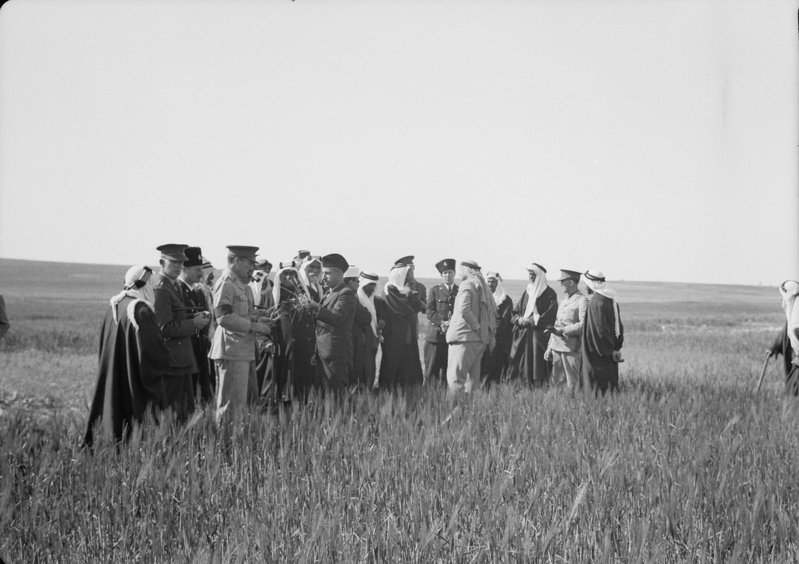 08. Группа гостей в поле слушает лекцию