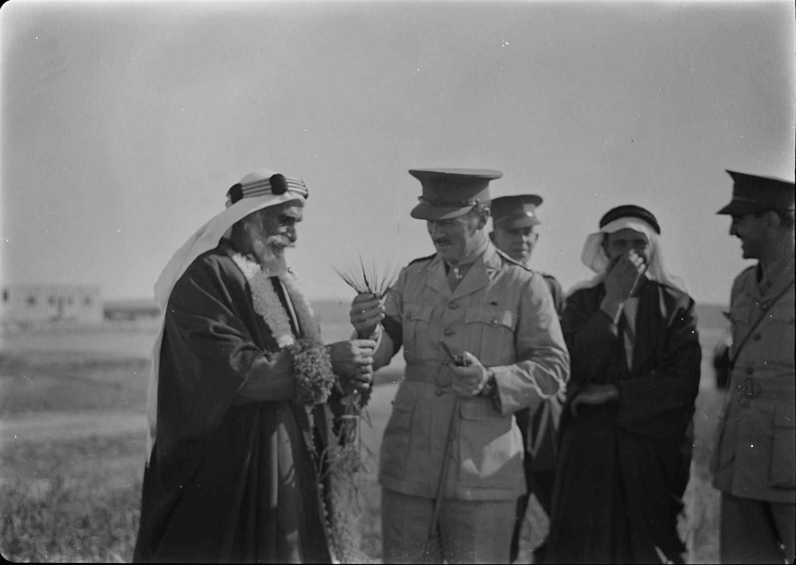 07. Генерал Аллан задает вопросы об австралийской пшенице