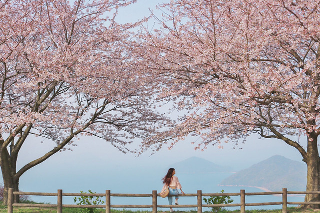 Kagawa Prefecture Off the Beaten Path
