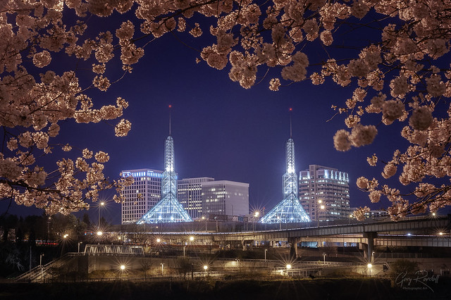 A Pretty Portland Portal