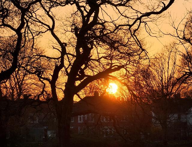 Heath Park Sunset 020421  2973