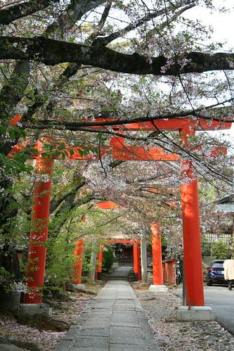 京都・吉田山の鳥居