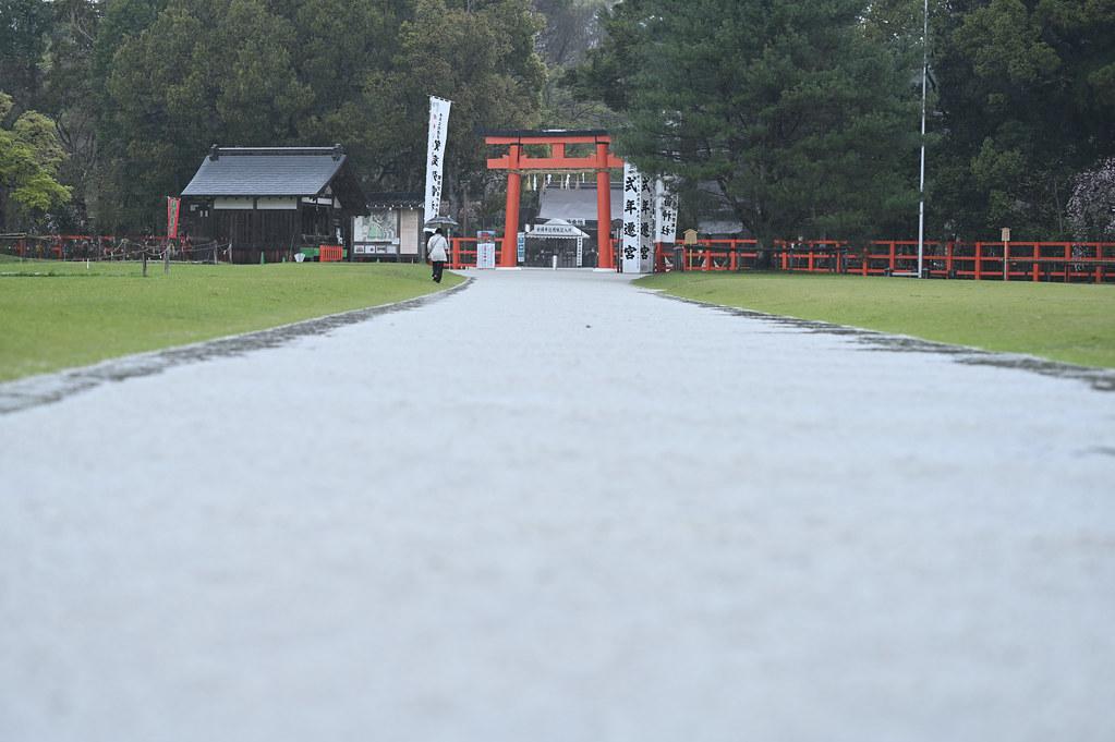 雨に桜散る下鴨半木の道・上賀茂神社 24