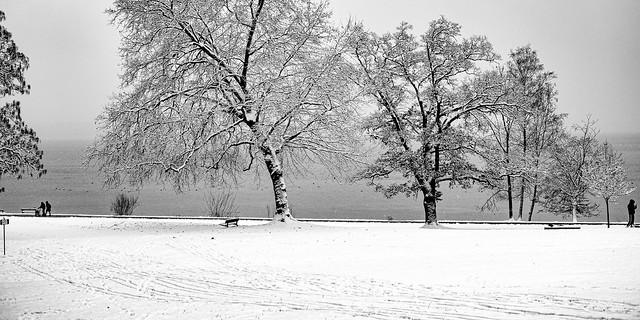 Winter at  lake Starnberg