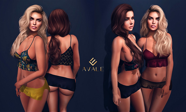 AVALE -Dolly-