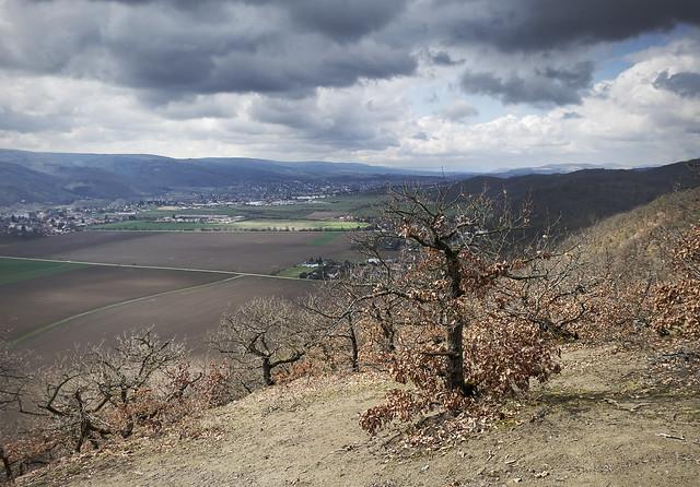 Valley of Berounka river