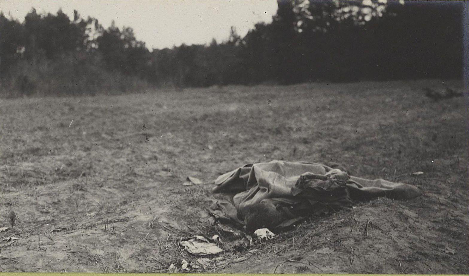 42. Трупы австрийцев нижних чинов, погибших при отступлении германцев от Вислы, в Августовском лесу у Козениц