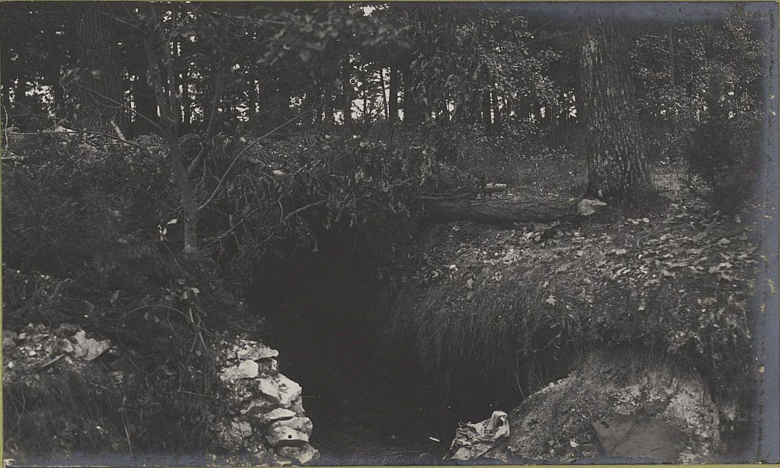 26. Австрийские окопы возле леса