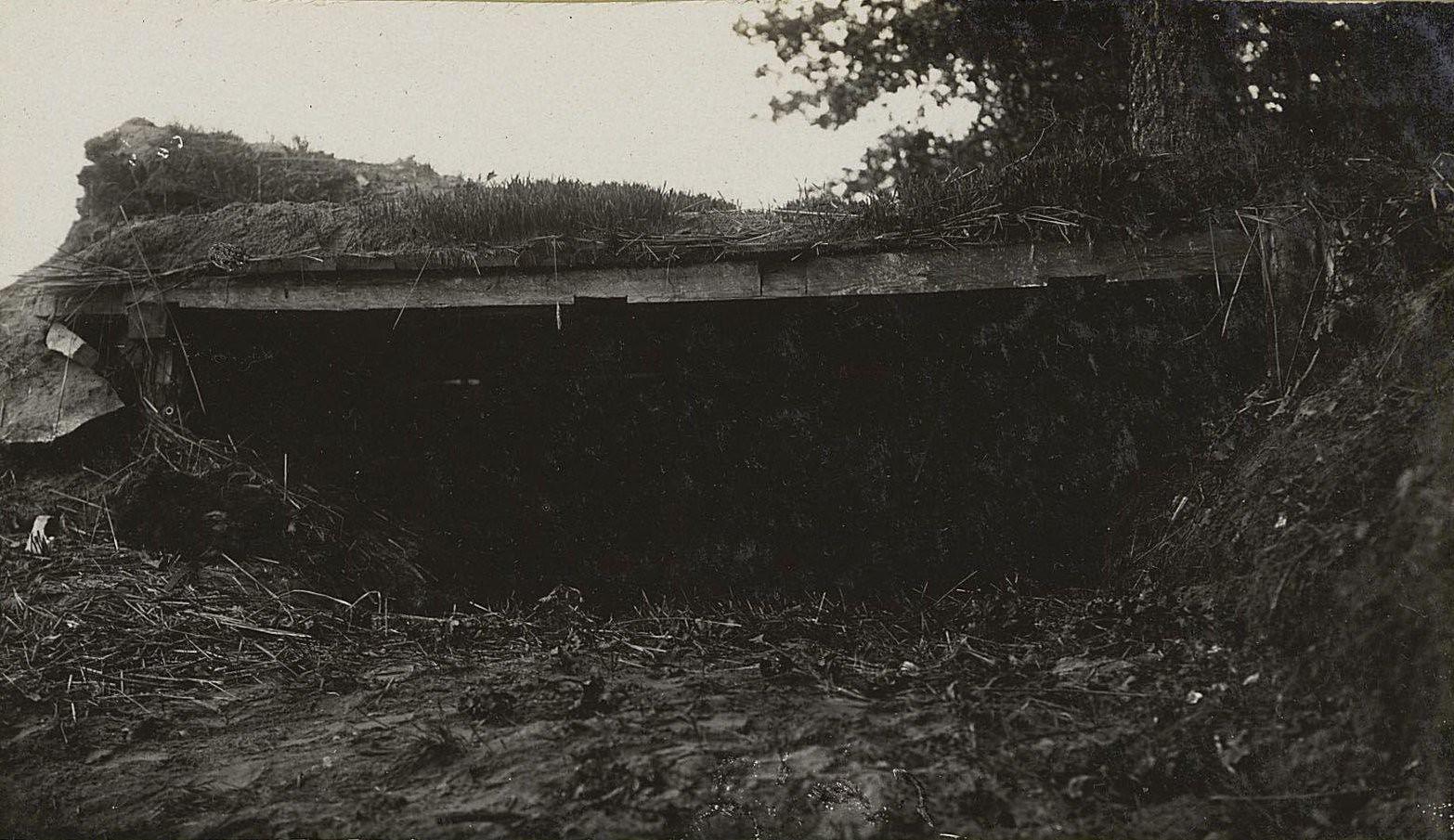 24. Австрийский окоп возле леса