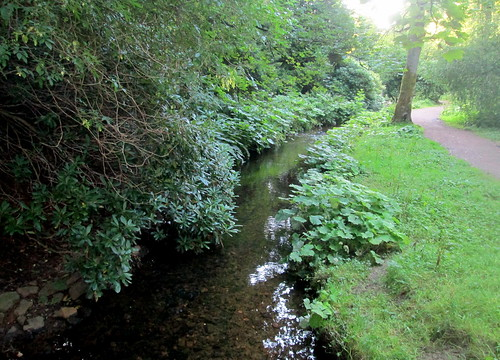 Balbirnie Park, View from Back Burn Bridge