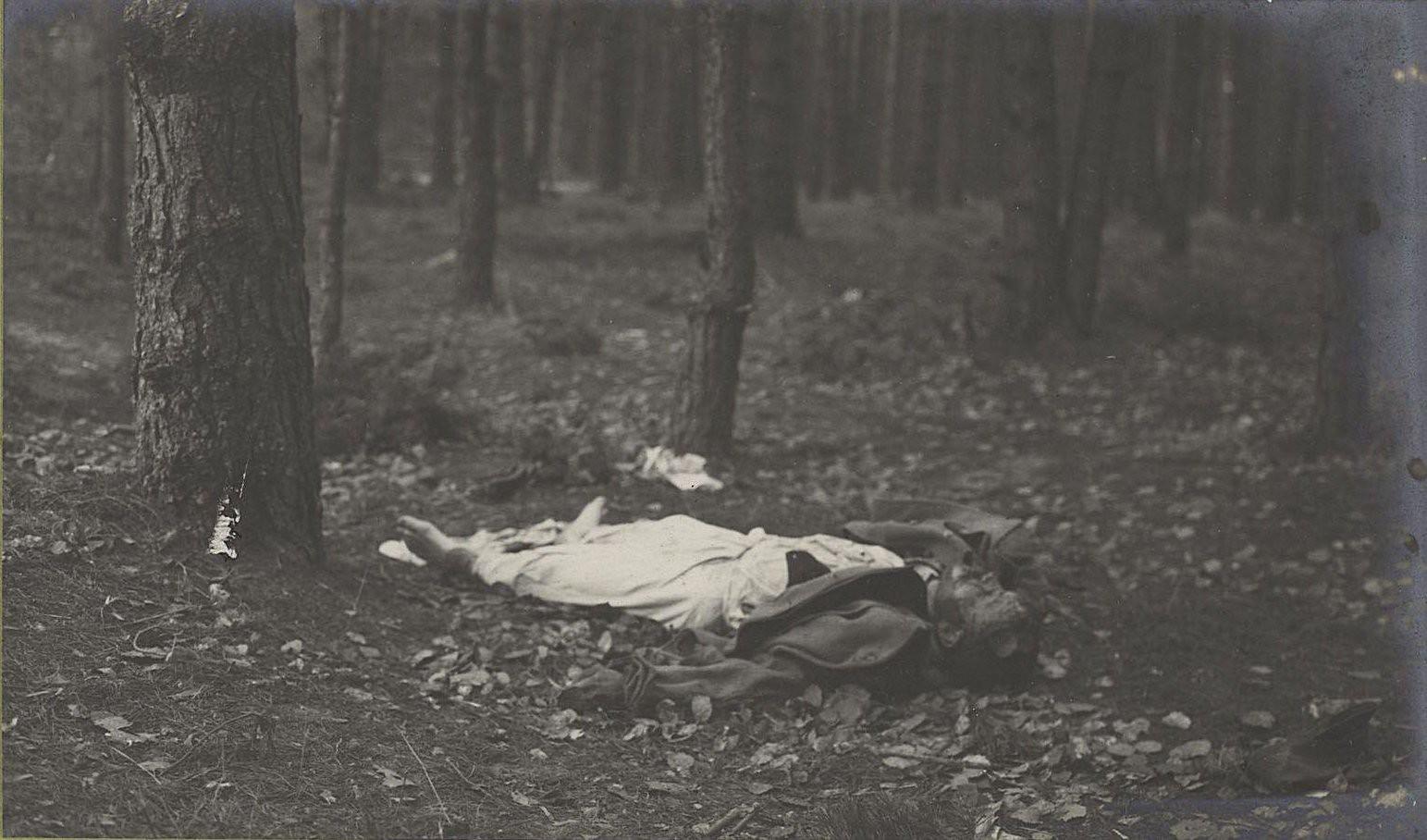 43. Трупы австрийцев нижних чинов, погибших при отступлении германцев от Вислы, в Августовском лесу у Козениц