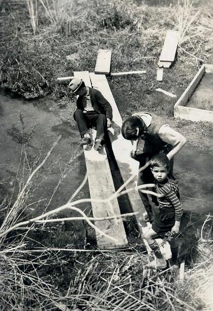 Fish scene c 1940
