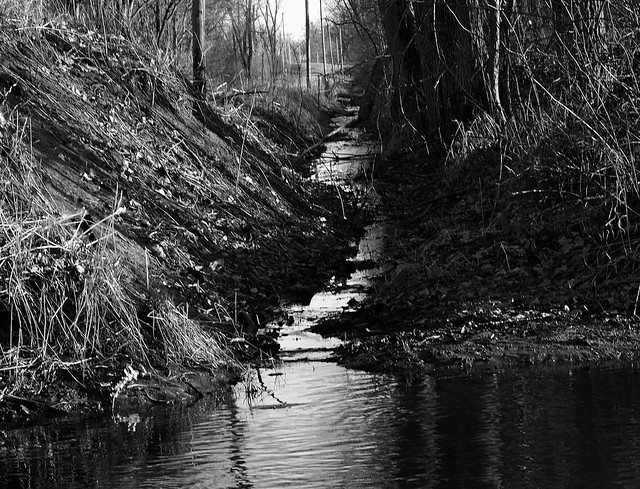 evening Indiana creek
