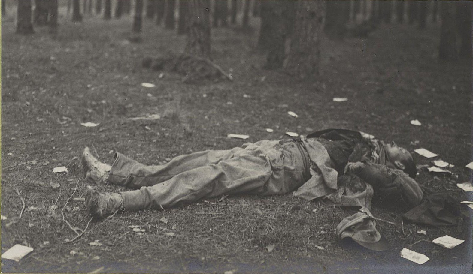 44. Трупы австрийцев нижних чинов, погибших при отступлении германцев от Вислы, в Августовском лесу у Козениц