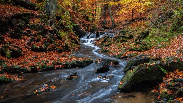 autumn paradies - Herbstliches Paradies