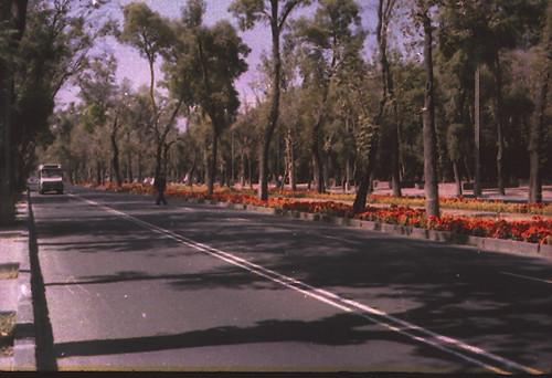 ligtroom-29 Av.  Reforma cdmx