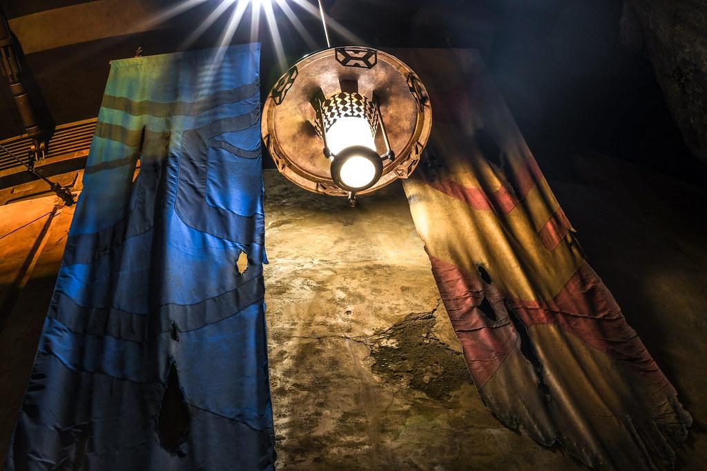 SWGE banner lantern night DHS