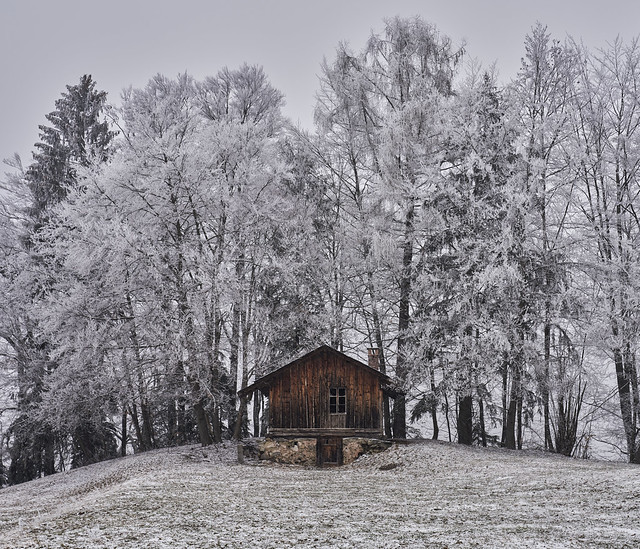 Nature wearing winter colours