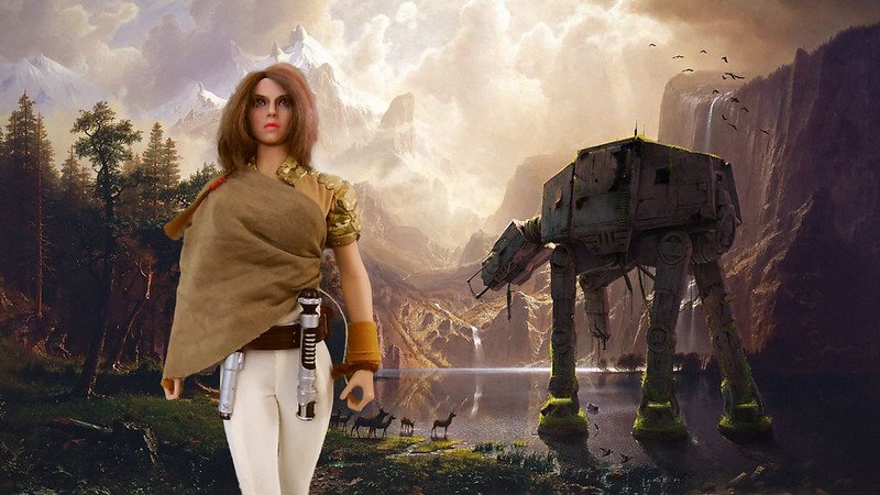 Savanna Jedi master. 51095929126_195025844c_c
