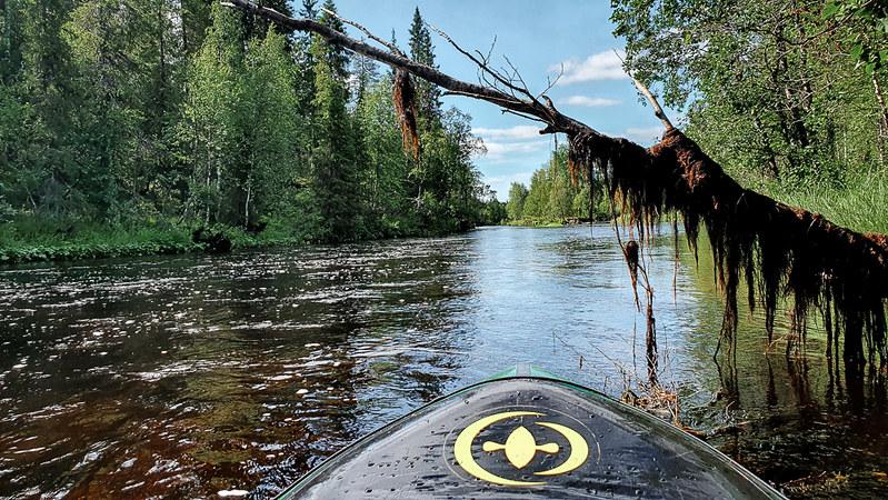 Äkäsjoki, packraft, Kesä Ylläksellä