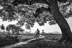 Vadakkal | 2021 by ayashok photography